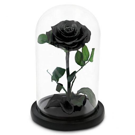 Schwarze Infinityrose im Glas