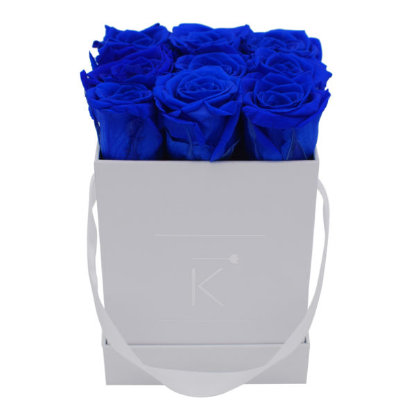 Rosenbox in Square mit Blaue Rosen