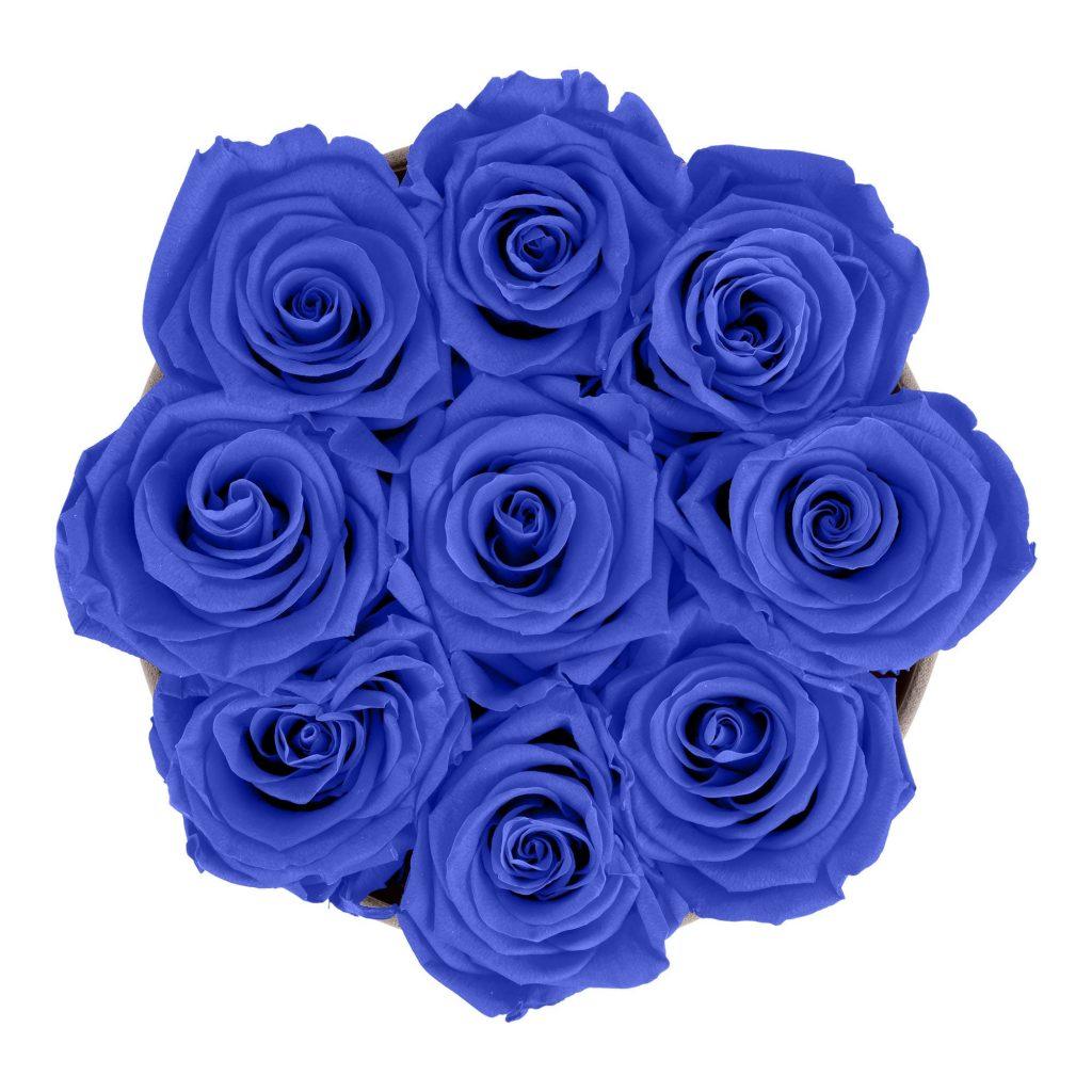 Rosenbox rund und schwarz mit neun blauen Infinityrosen, Anischt von oben