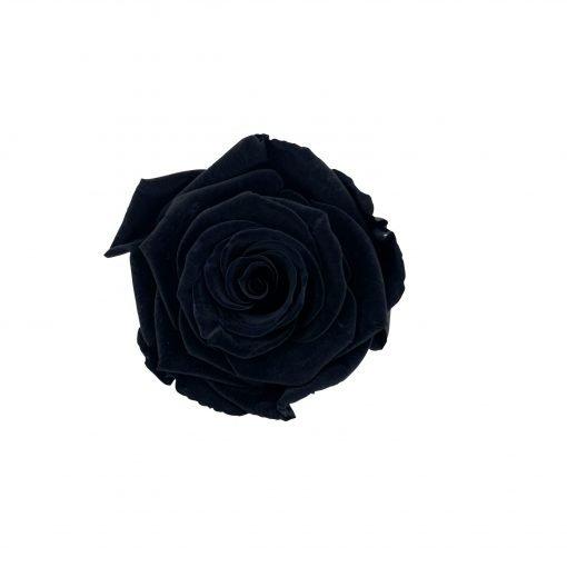 Infinityrose schwarz von oben