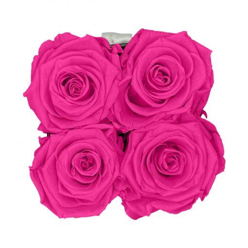 Eckige Rosenbox in schwarz weiß mit purple pinken Rosen von oben