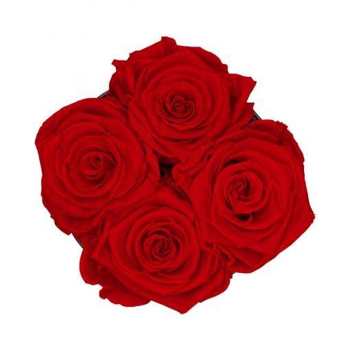 Kleine Rosenbox mit vier Infinityrosen in rot von oben