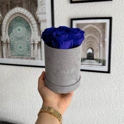 Kleine Rosenbox Samtfinish mit 4 blauen Infinityrosen wird von einer Frau in der Hand gehalten
