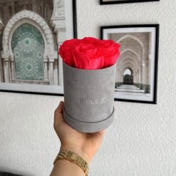 Kleine Rosenbox Samtfinish mit 4 pfirsichrosanen Infinityrosen wird von einer Frau in der Hand gehalten