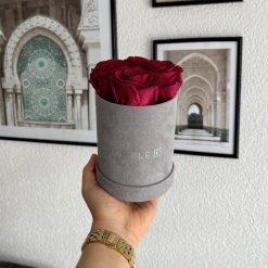Kleine Rosenbox Samtfinish mit 4 roten Infinityrosen wird von einer Frau in der Hand gehalten