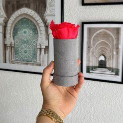 Rosenbox mit einer pinken Infinityrose wird von einer Frau in der Hand gehalten