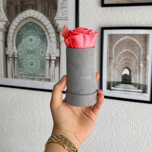 Rosenbox mit einer pfirsichrosanen Infinityrose wird von einer Frau in der Hand gehalten