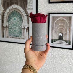 Rosenbox mit einer roten Infinityrose wird von einer Frau in der Hand gehalten