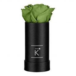 Kleine schwarze Rosenbox mit grüner Infinityrose