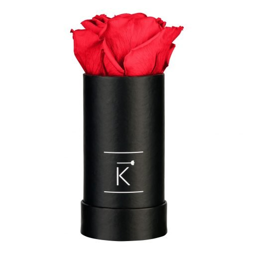 Kleine schwarze Rosenbox mit roter Infinityrose