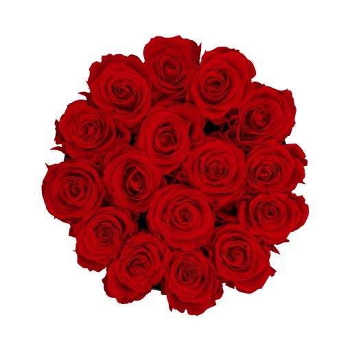 Rosenbox rund und schwarz mit roten Infinityrosen, Anischt von oben