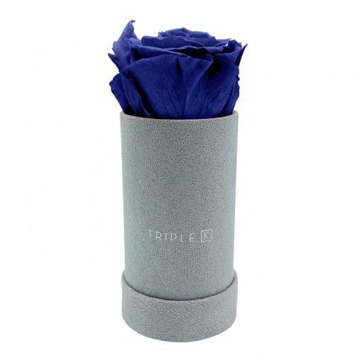 Rosenbox mit einer blauen Infinityrose