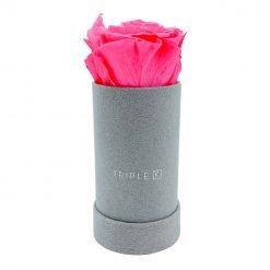 Rosenbox mit einer pinken Infinityrose